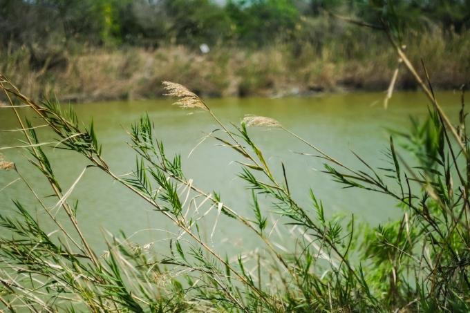 03.17.20_Estero Llano Grande State Park_Fujifilm XH1_WEB_Ben Briones-6833